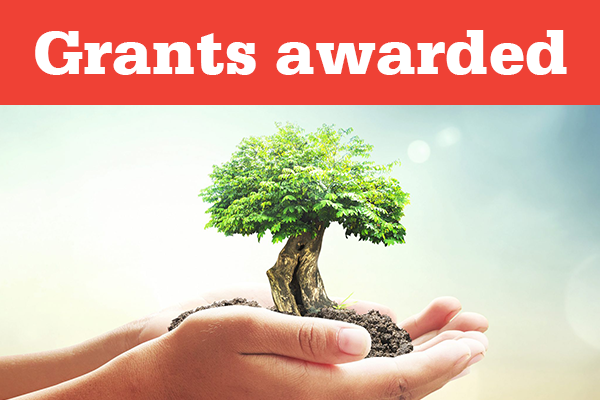Law Week Grants for 2019 have been awarded